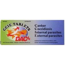 CCIE tablet EXPORT *NEW*